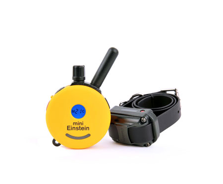 Running With The Bulls furthermore dogtrackernano additionally Best Pet Tracker Under 100 furthermore collarclinic also Gps Tracker For Hunting. on best gps tracking collars for dogs