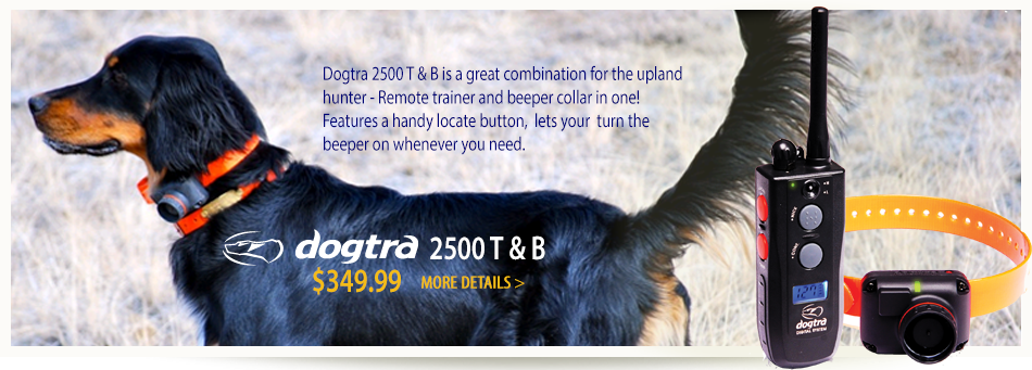 Dogtra 2500 Train and Beep a best seller collar for bird dogs
