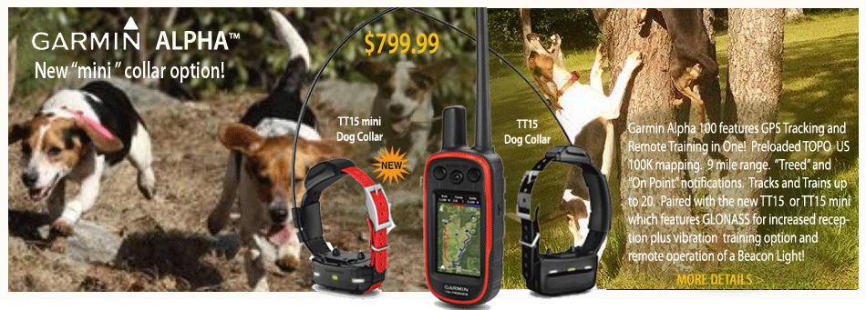 Garmin Alpha 100 GPS and TT15 training collars